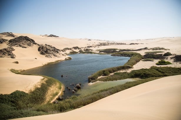 relief_in_the_desert_-_an_oasis_we_visited_on_the_way_to_the_atlantic