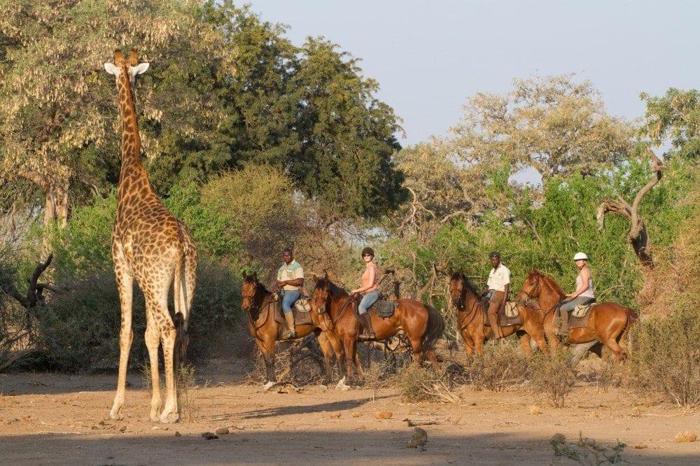 mashatu-horse-safari-10