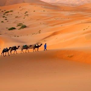 Sahara Desert | Luxury Morocco Trips