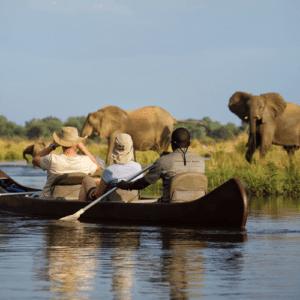 Lower Zambezi | Luxury Zambia Safari